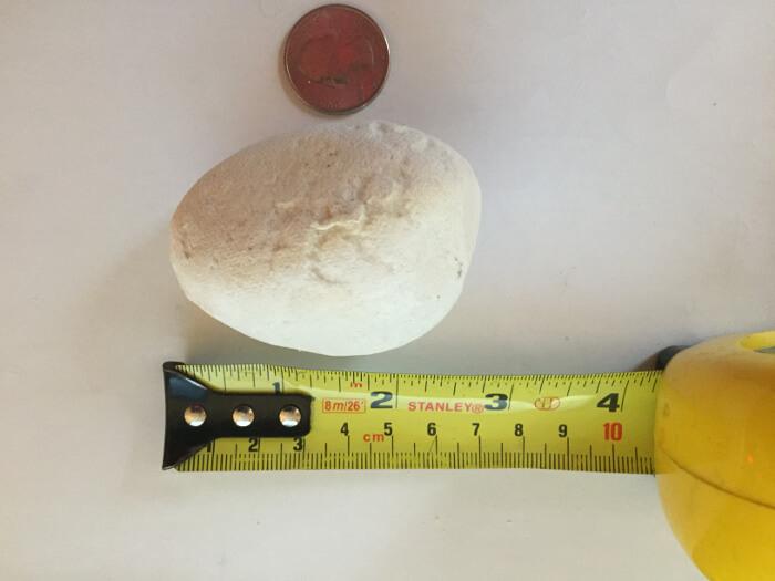 length of White Pebble